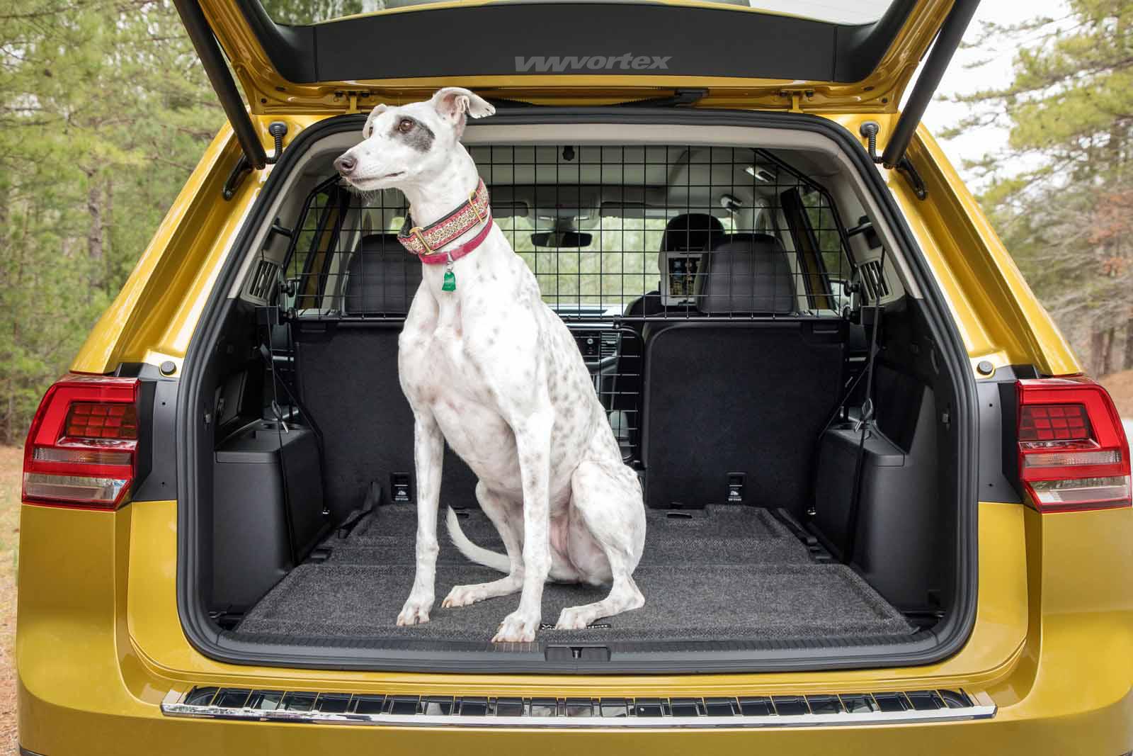 More Photos Of Audi Rs 6 Avant Performance Fourtitude Com