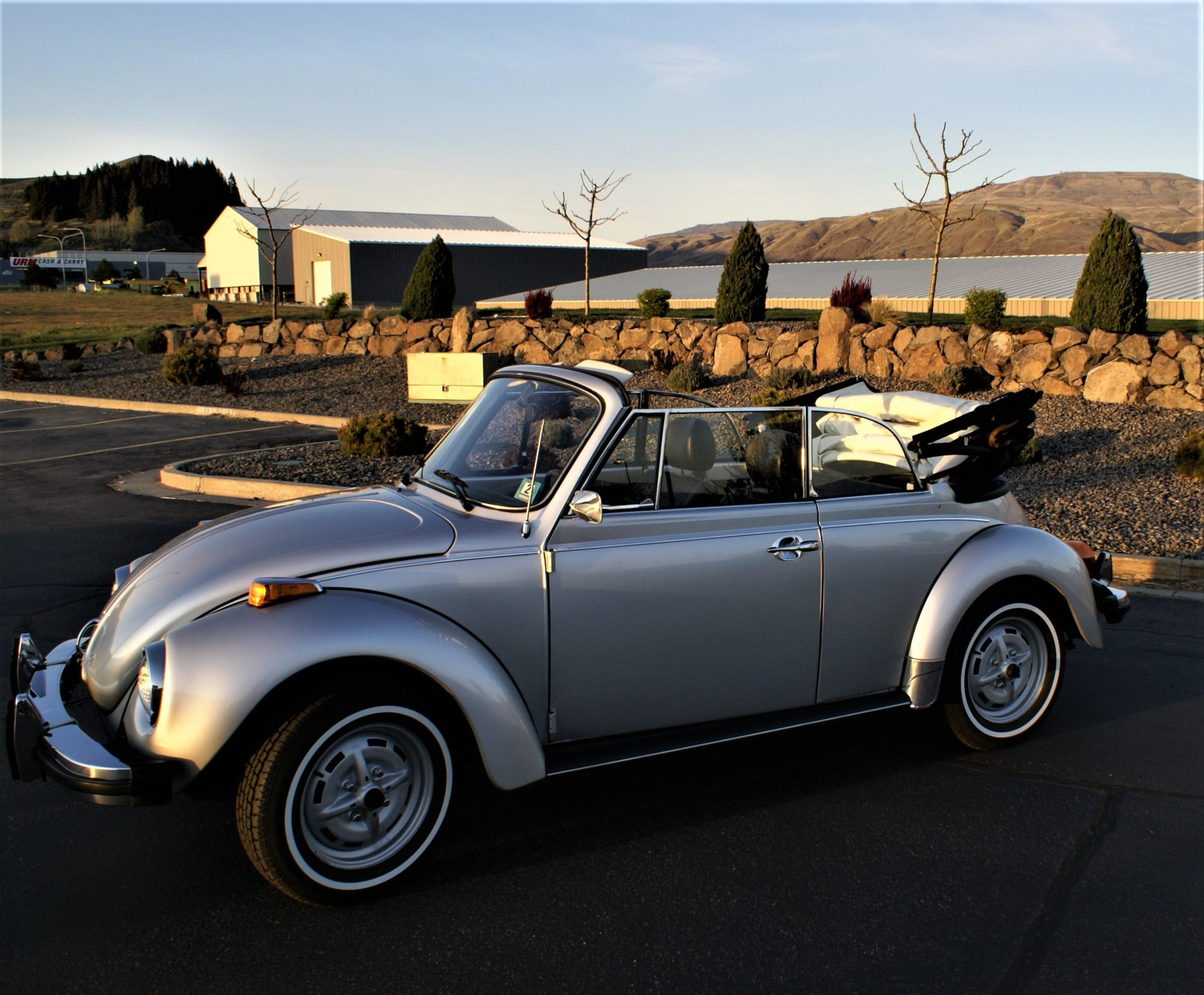 1979_volkswagen_super_beetle_cabriolet_15870728785ff3ef5edb25977DSC07325-scaled