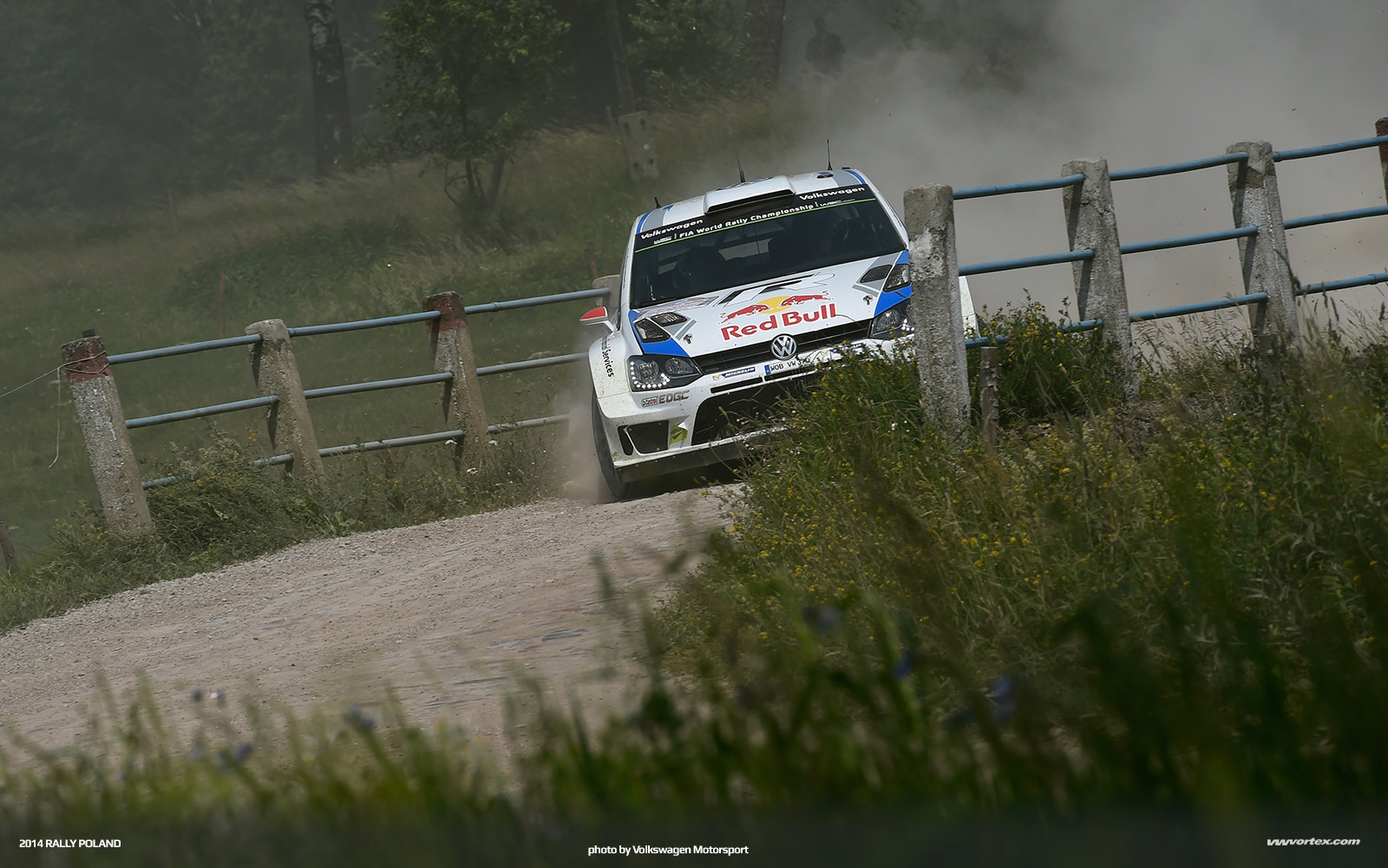 2014-rally-poland-volkswagen-polo-r-wrc-367