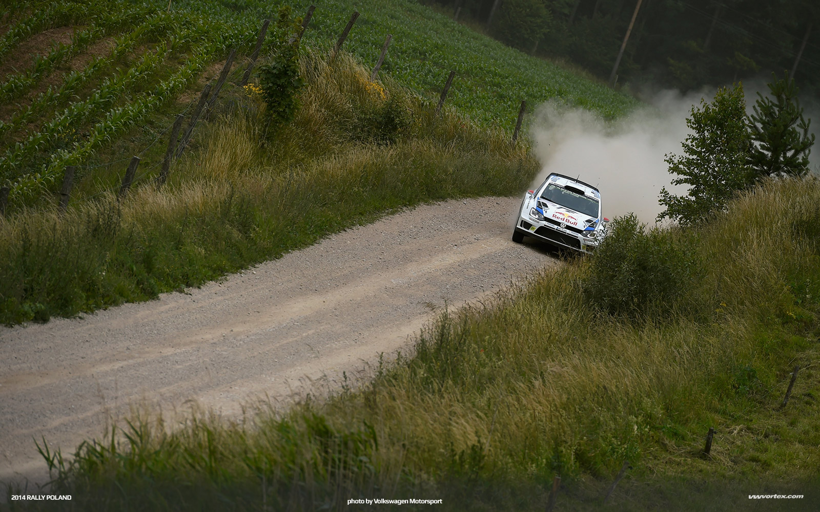 2014-rally-poland-volkswagen-polo-r-wrc-368