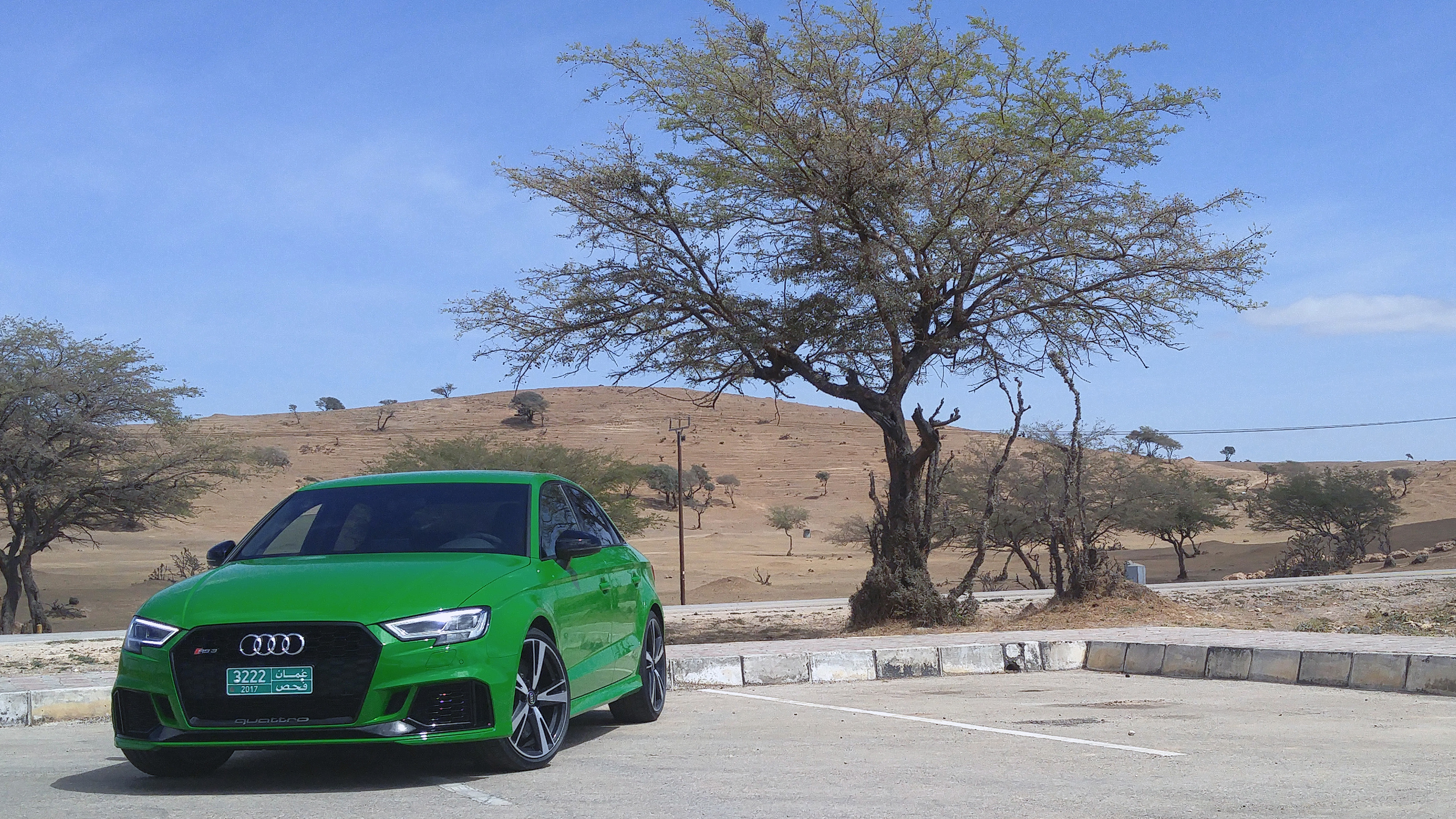 2018-audi-rs-3-review-tree