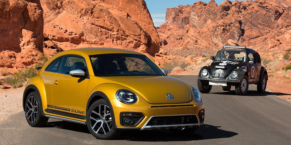 Beetle-Dune-13