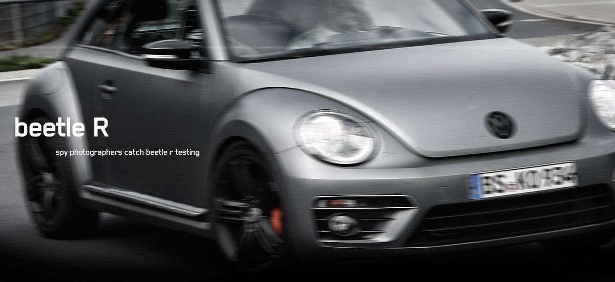 beetle r hp2