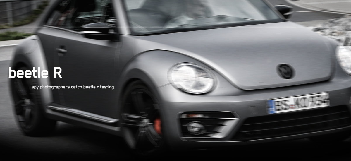 beetle r hp2 110x60