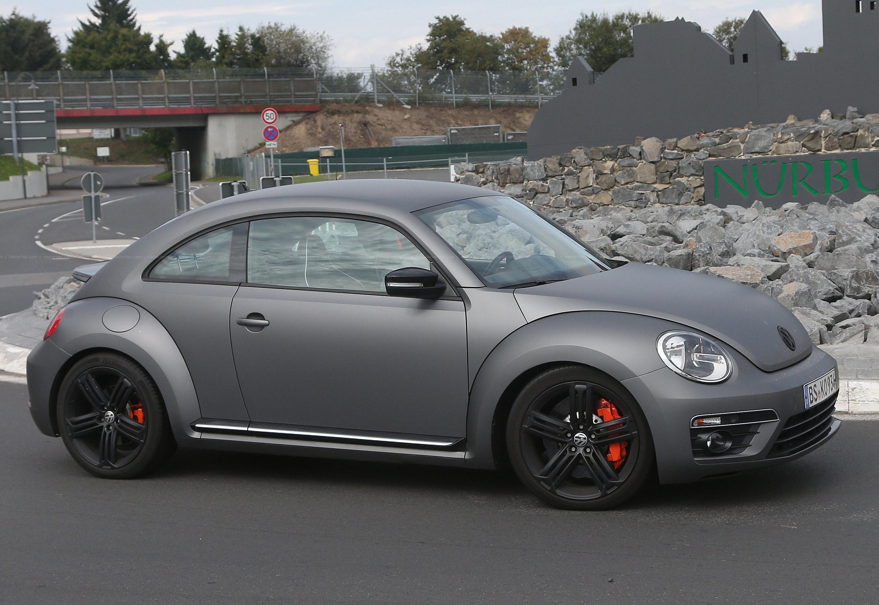 Beetle-R-mule-3