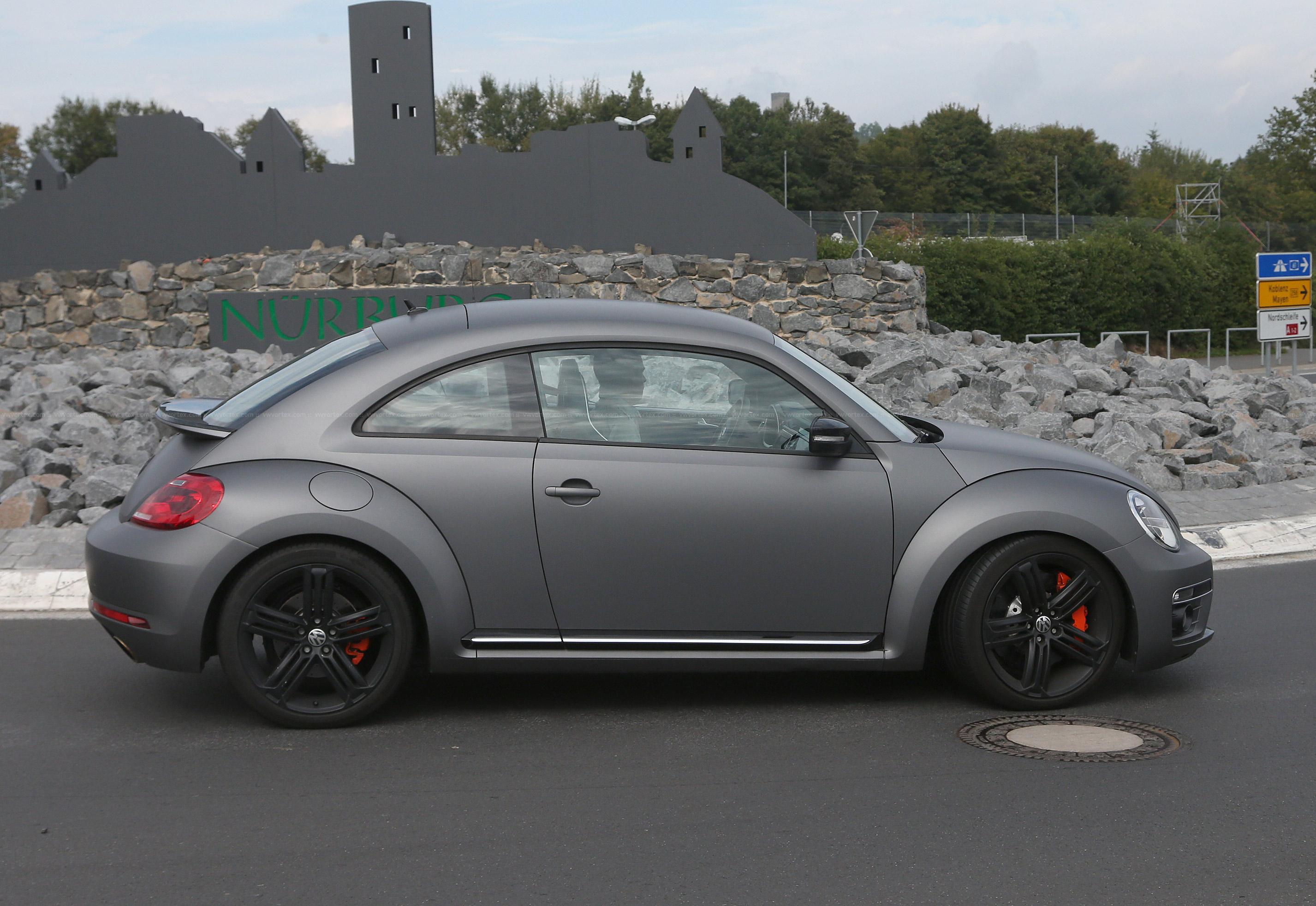 Beetle-R-mule-5