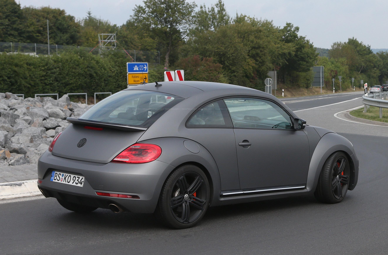Beetle-R-mule-6