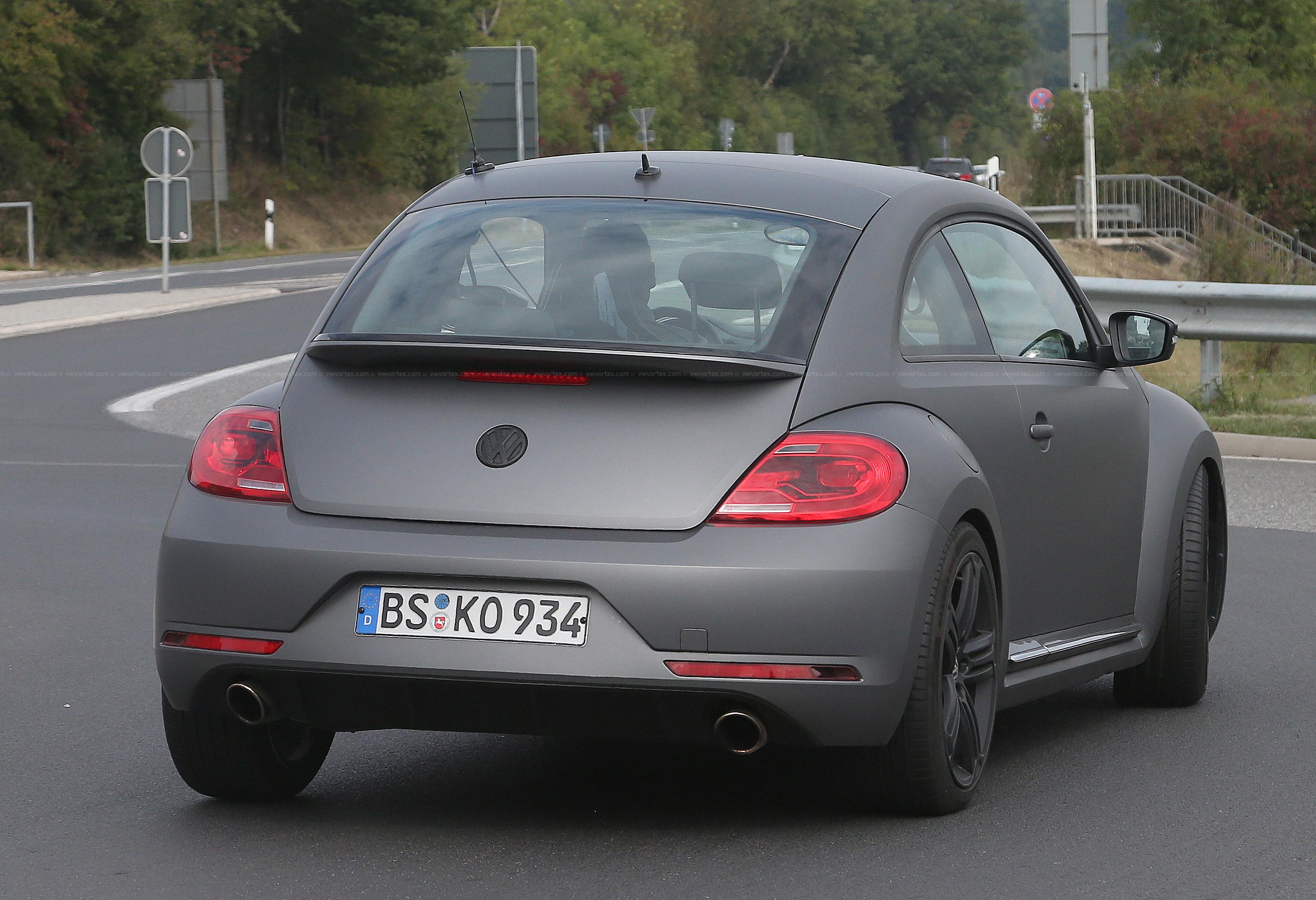 Beetle-R-mule-7