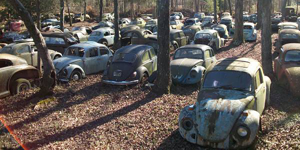 Find of the Day: Massive Volkswagen Auction in South