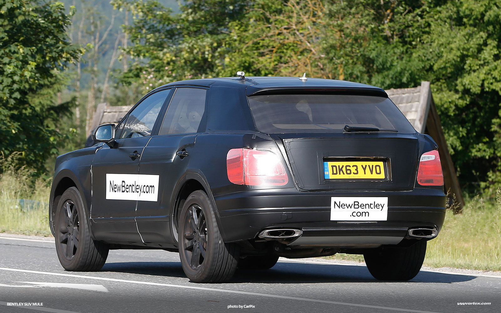 bentley-suv-mule-spy-photos-371