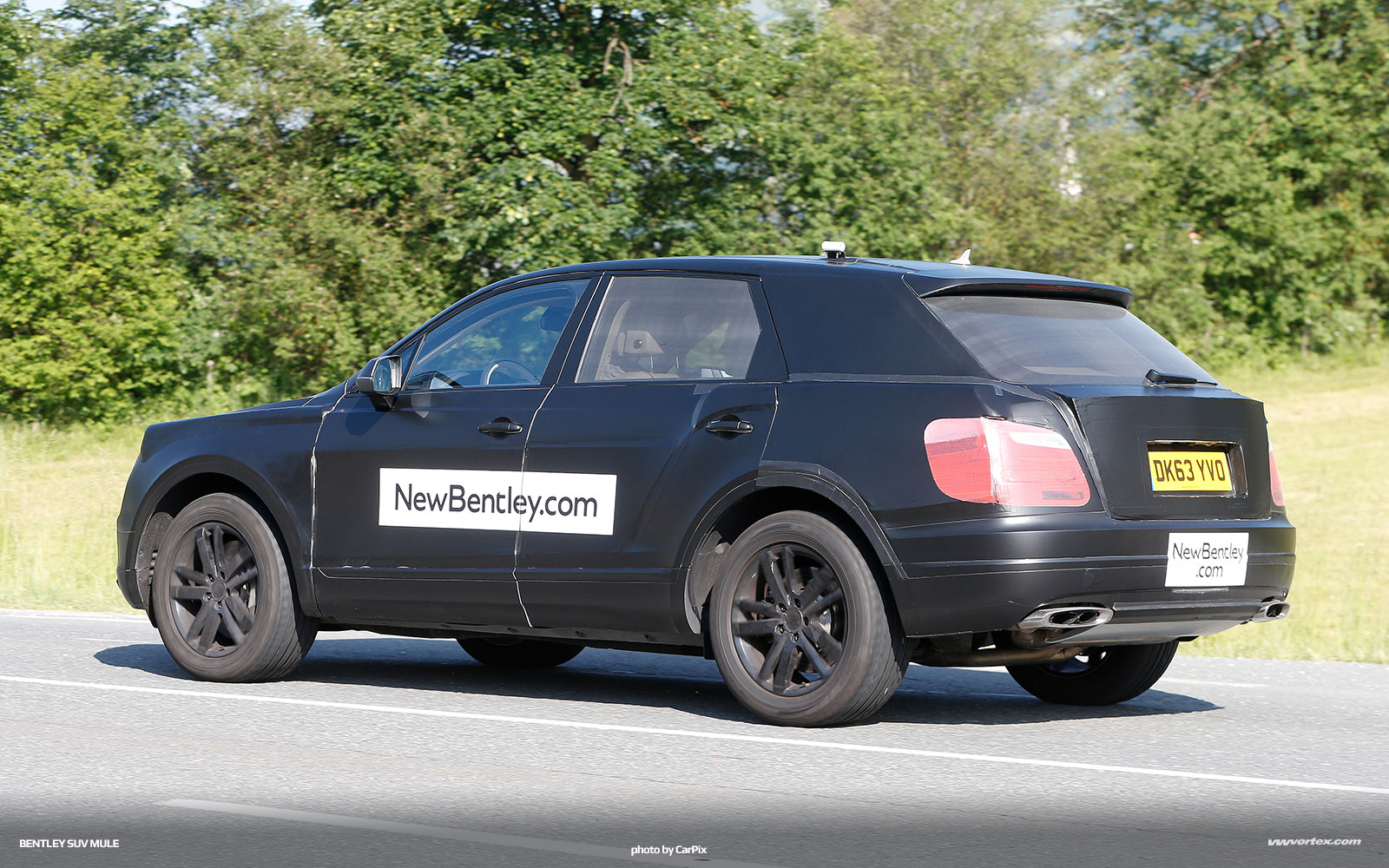 bentley-suv-mule-spy-photos-373