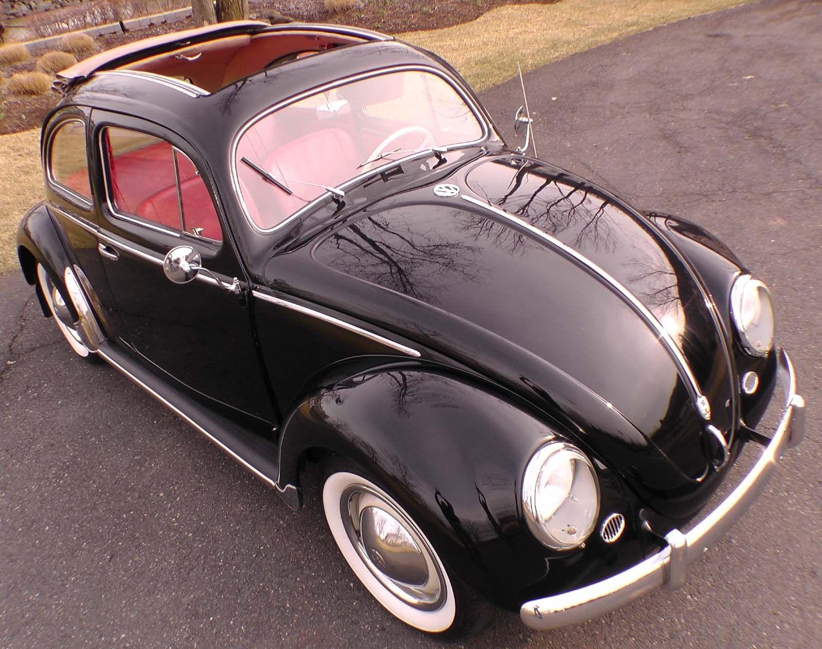 bug2 600x474