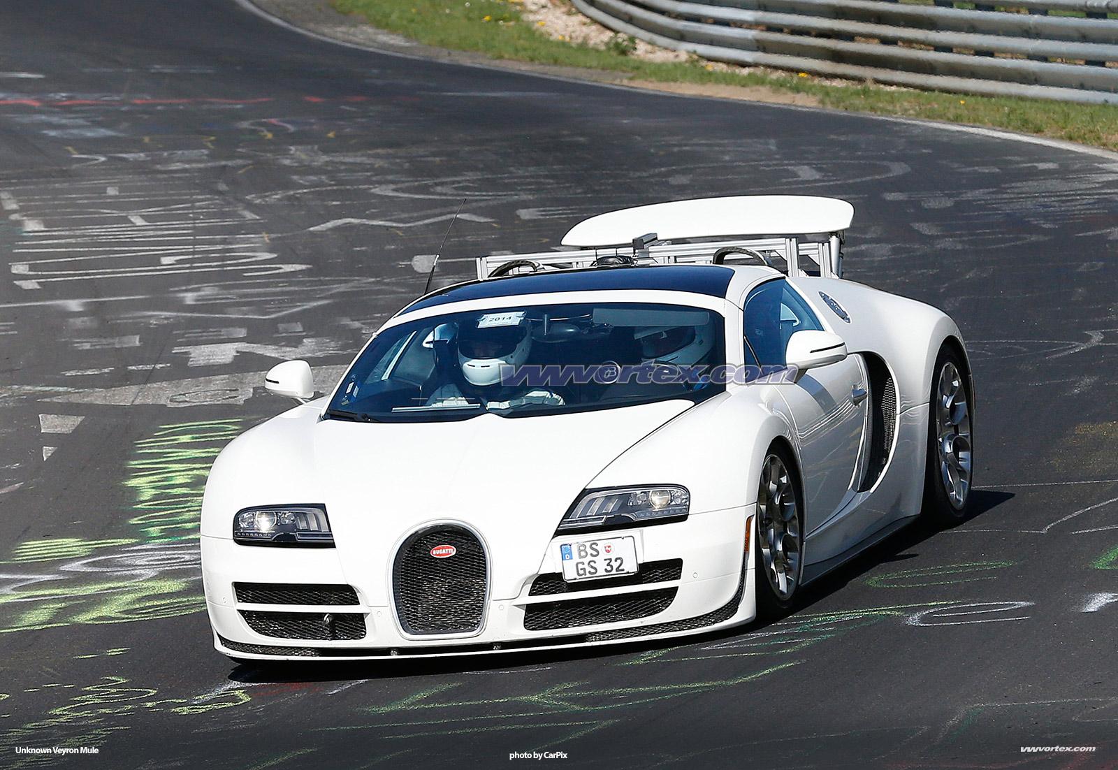 bugatti-veyron-mules-362