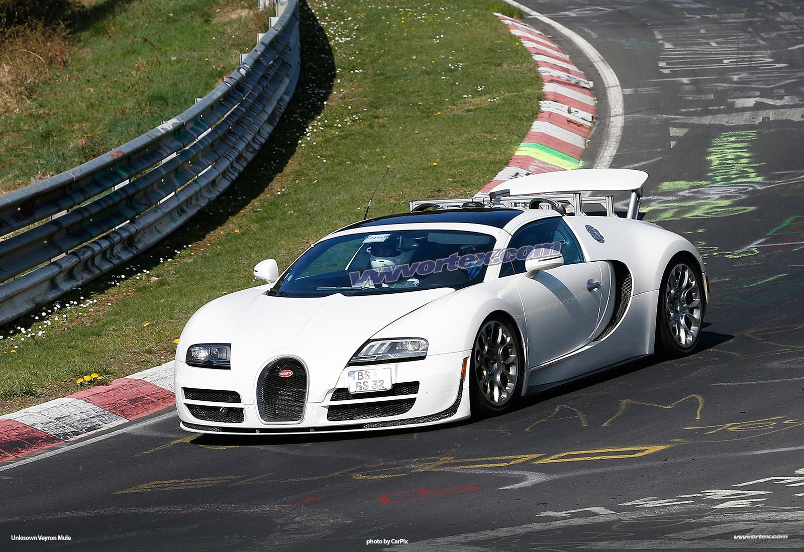 bugatti-veyron-mules-363