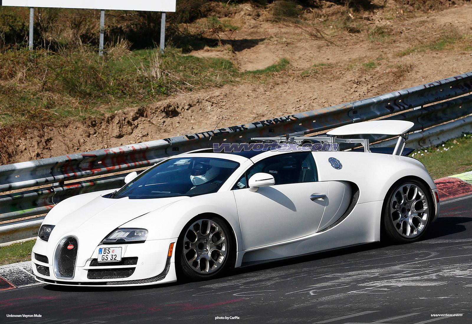 bugatti-veyron-mules-364