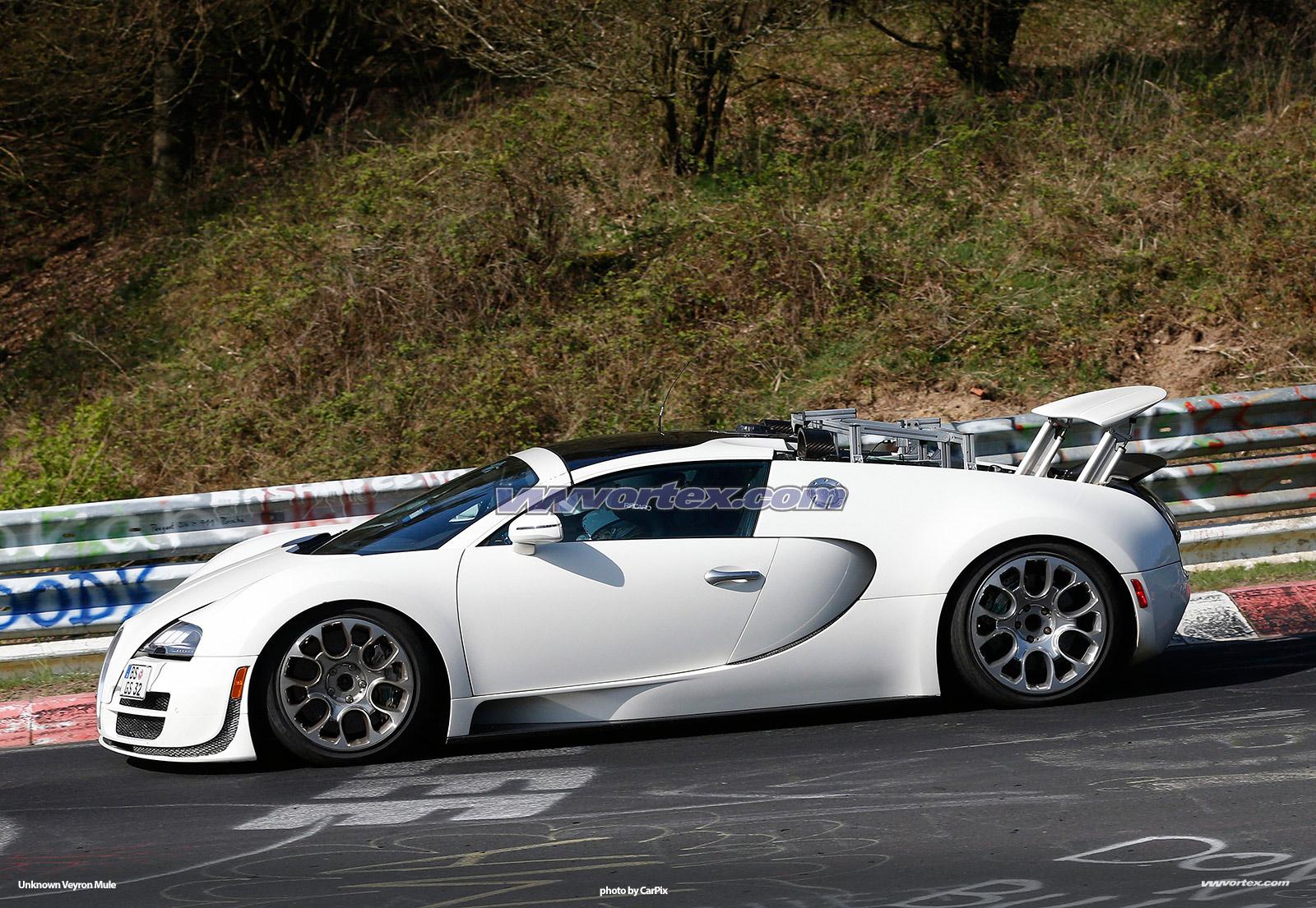 bugatti-veyron-mules-365