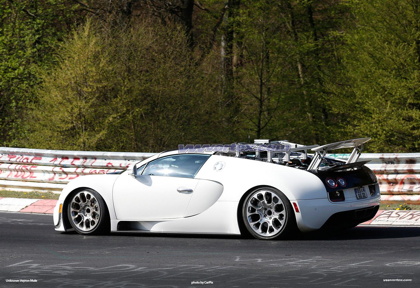 bugatti-veyron-mules-366