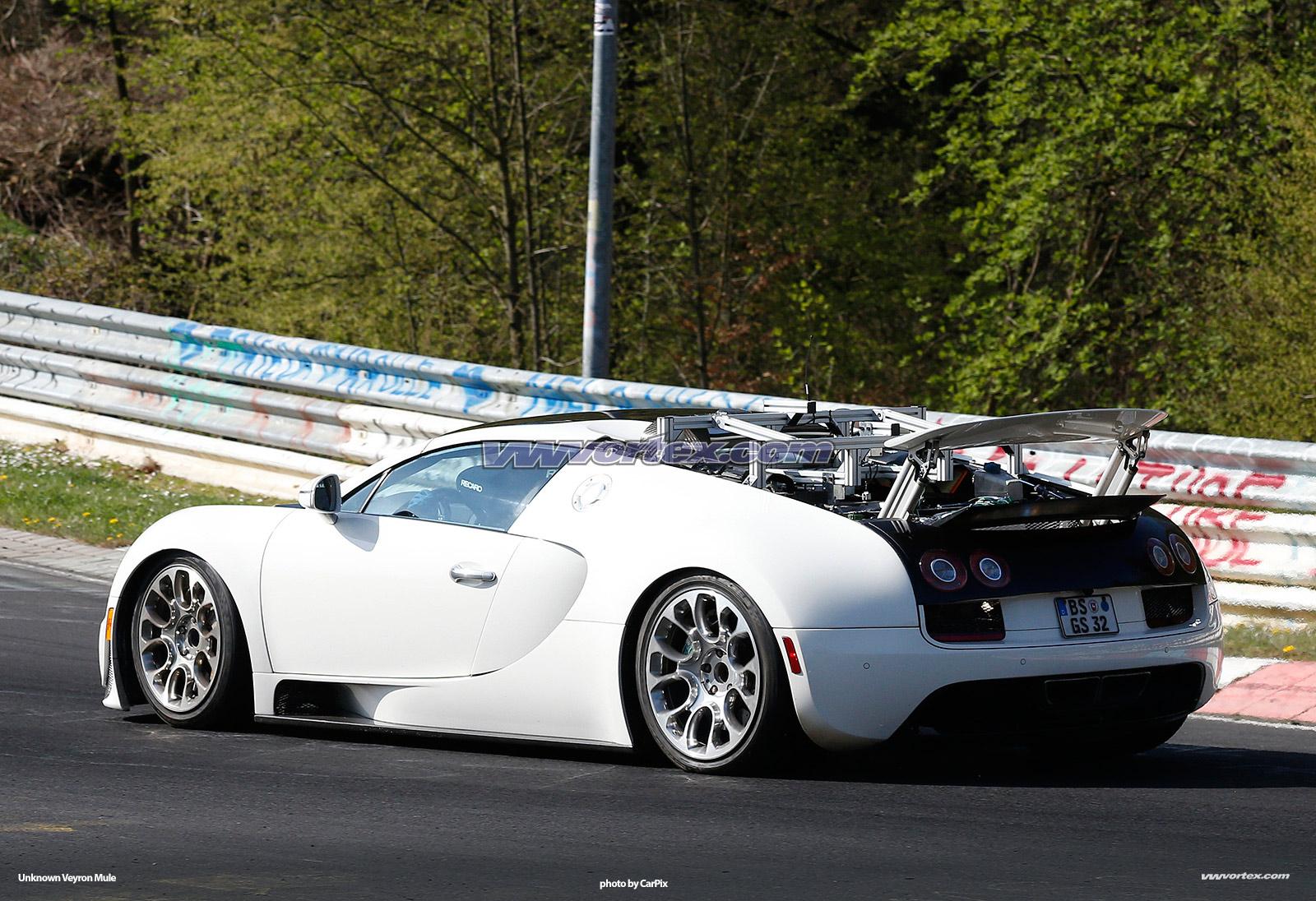 bugatti-veyron-mules-367