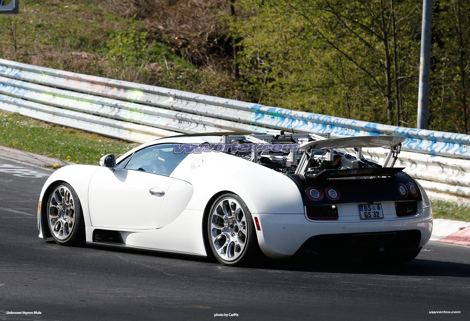 bugatti-veyron-mules-368