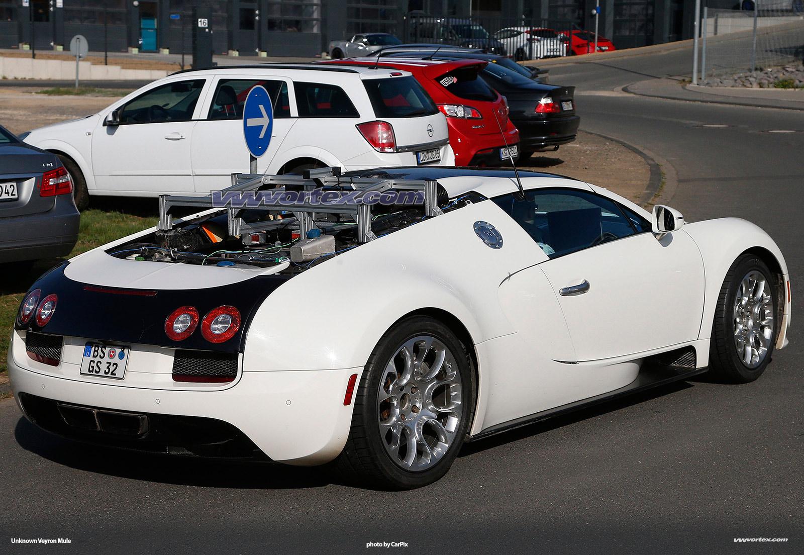 bugatti-veyron-mules-369