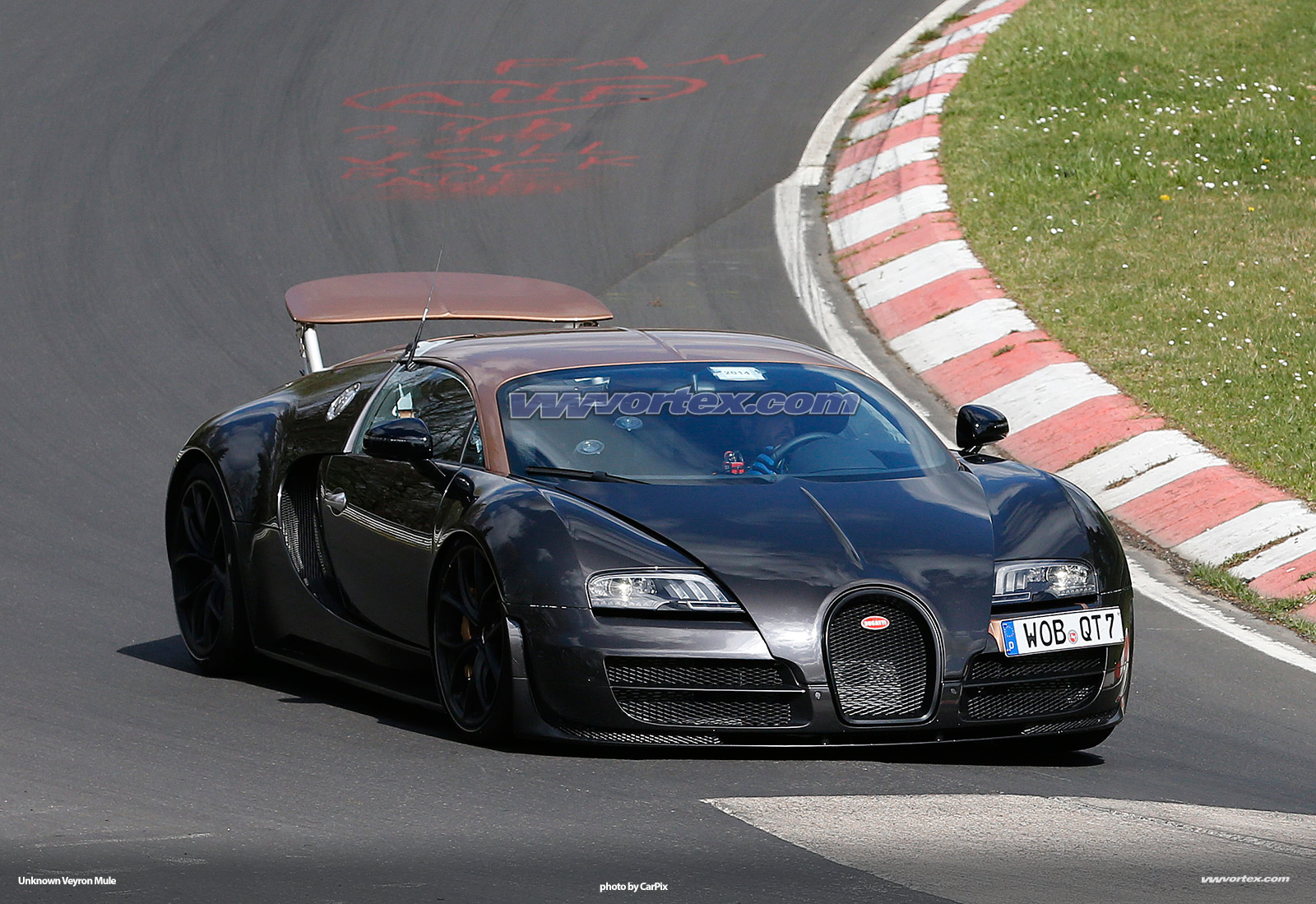 bugatti-veyron-mules-371
