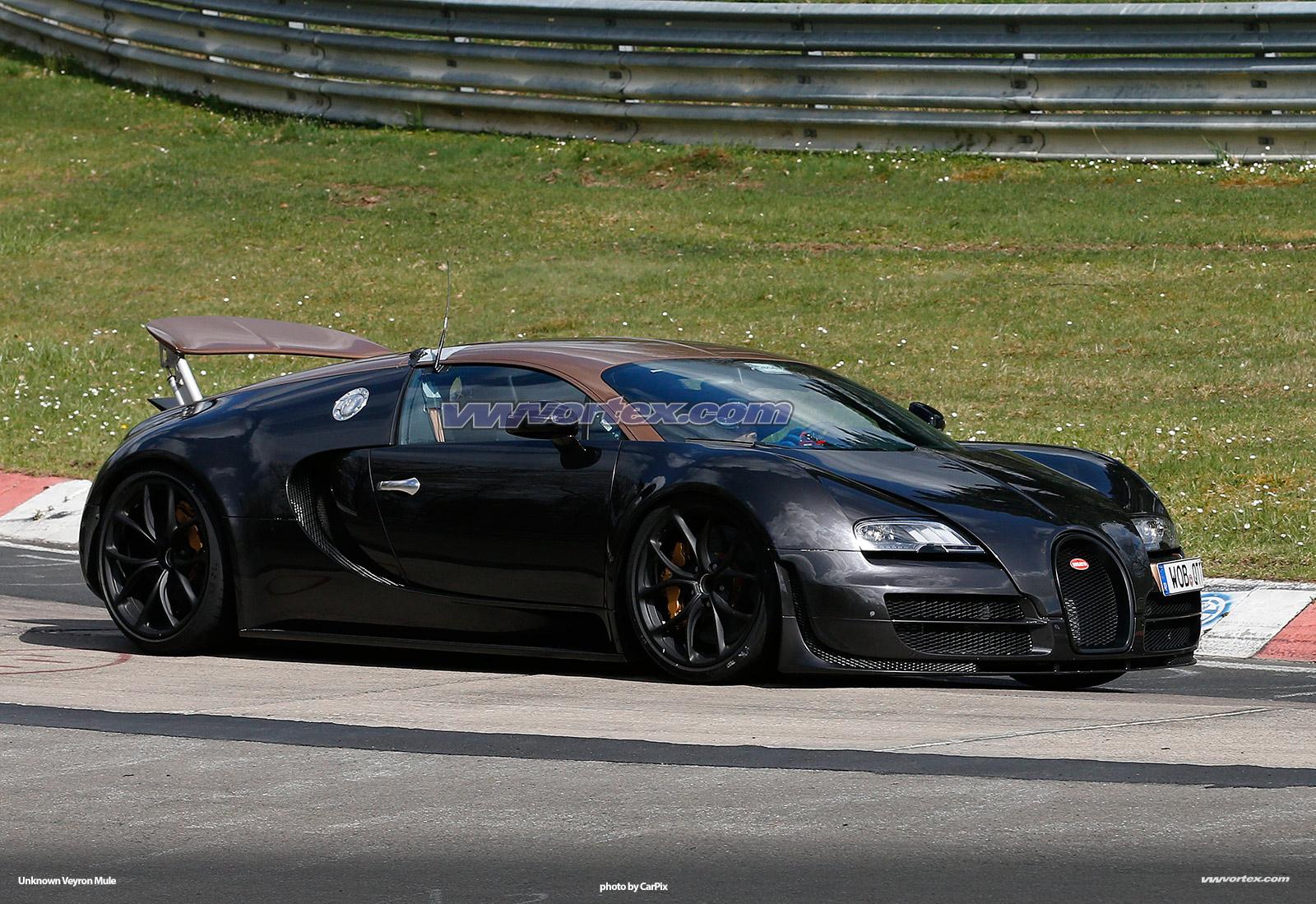 bugatti-veyron-mules-372