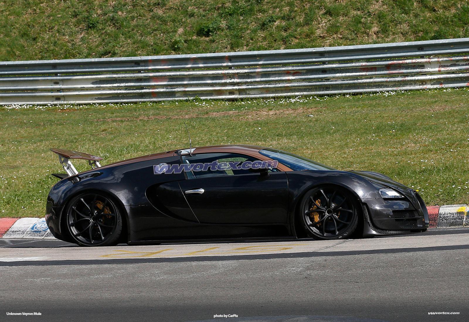 bugatti-veyron-mules-373