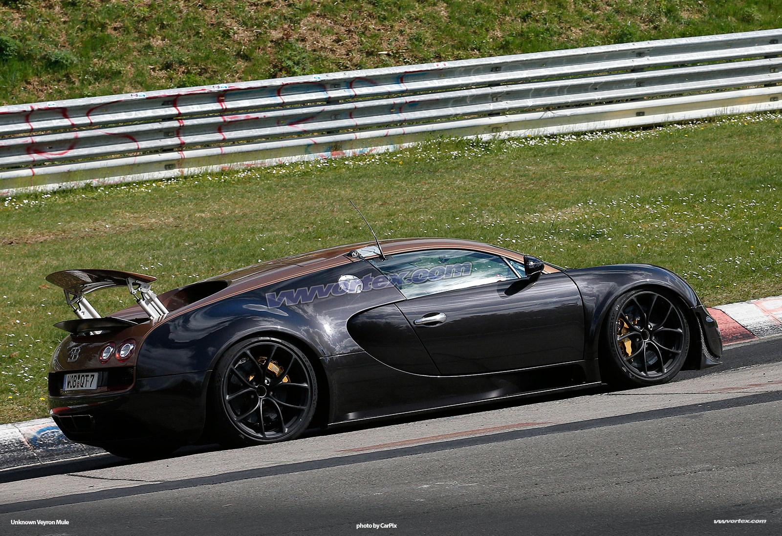 bugatti-veyron-mules-374