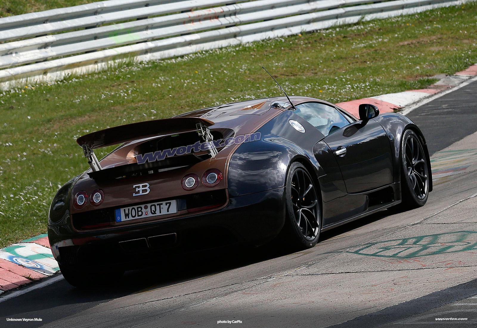 bugatti-veyron-mules-375