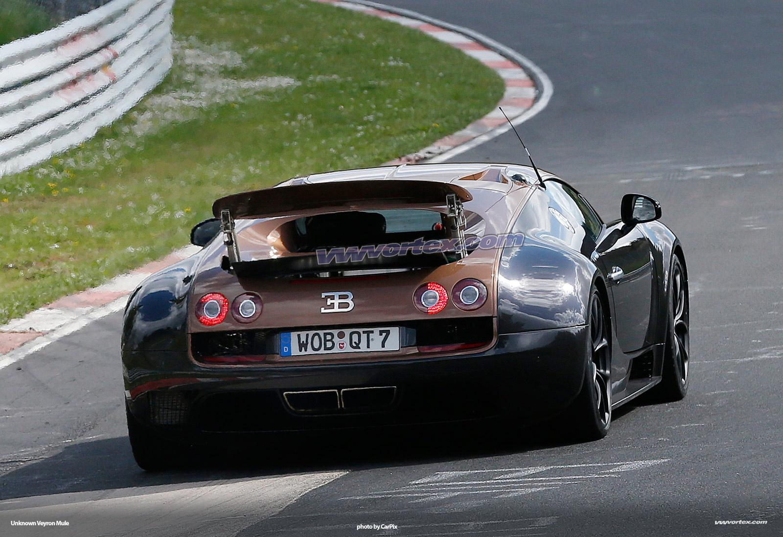 bugatti-veyron-mules-376
