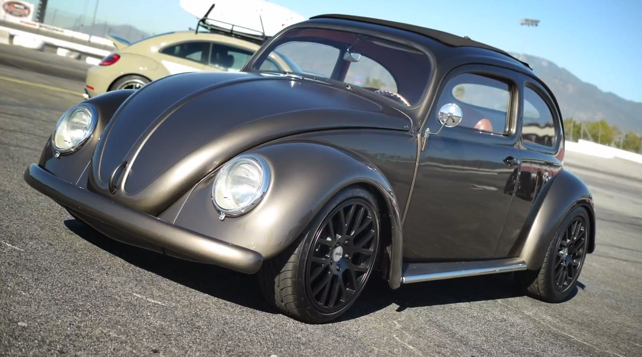 fms beetle 110x60