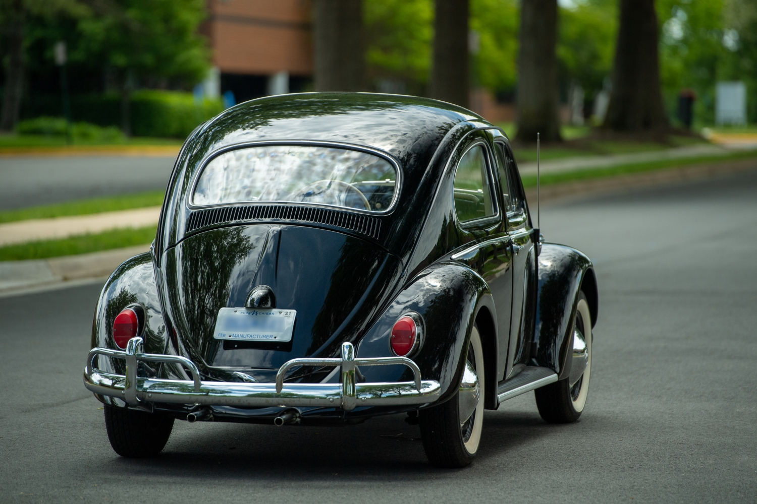 The_Volkswagen_Max_Beetle-Small-11991