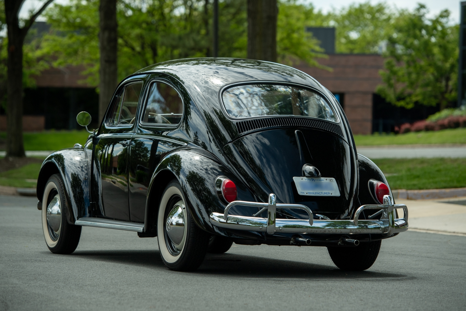 The_Volkswagen_Max_Beetle-Small-11993