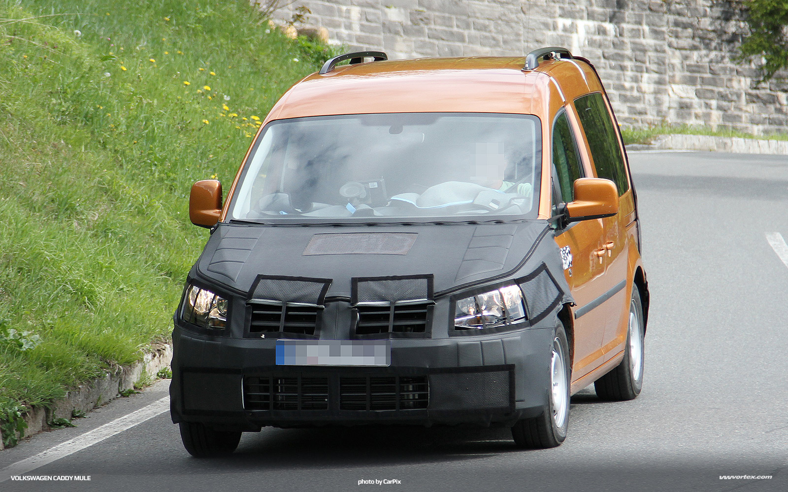 Volkswagen-Caddy-Mule-2