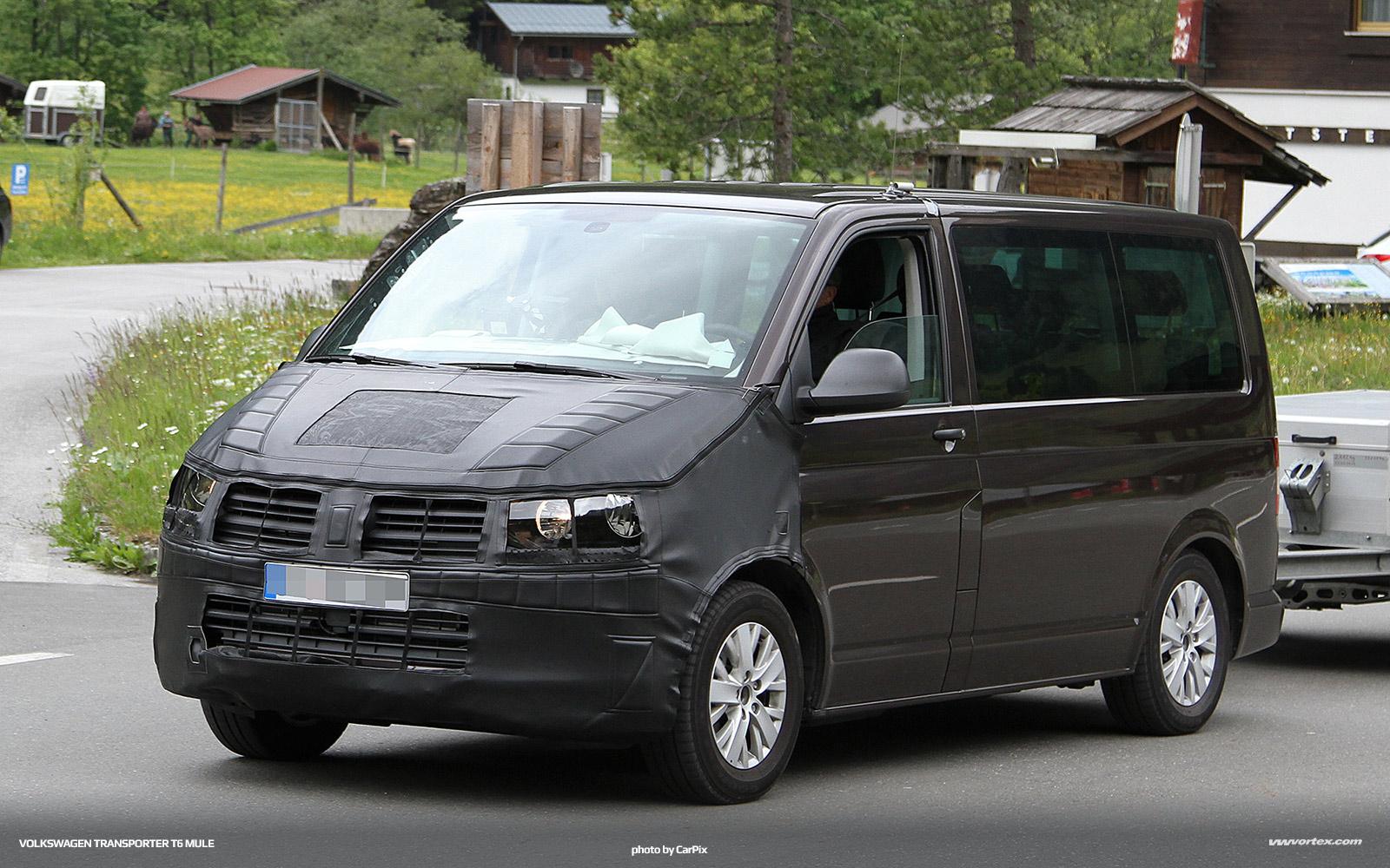 Volkswagen-Transporter-T6-mule-366
