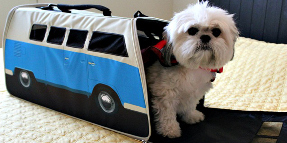vw-campervan-pet-carrier-review