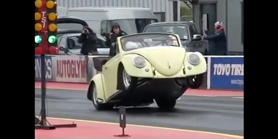 wheelie beetle